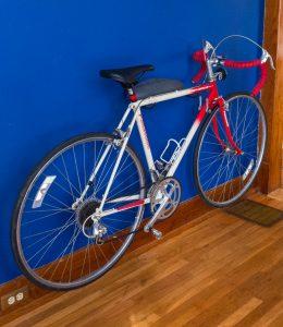 Bicycle Wall Art (Panasonic DX-2000) bicycle